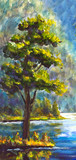 Original oil painting Green Pine Tree on shore against the backdrop of blue mountain river. Beautiful  landscape. Modern impressionism painting art.