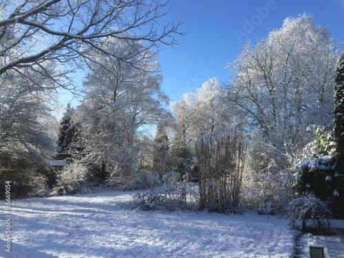 Foto op Canvas Grijs Winter in our Garden