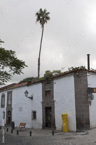 Poster Canarische Eilanden Arucas, Gran Canaria, Canary Islands, house and palm tree
