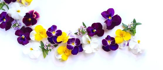 春の花 花びら 室内 © yurisyan