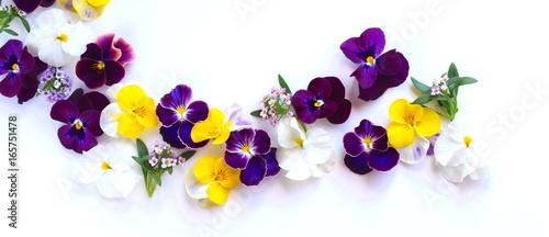 春の花 花びら 室内