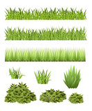 Grass and Bush Collection - 165758830