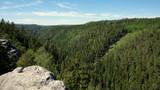 Widok na czeski las z góry w parku krajobrazowym