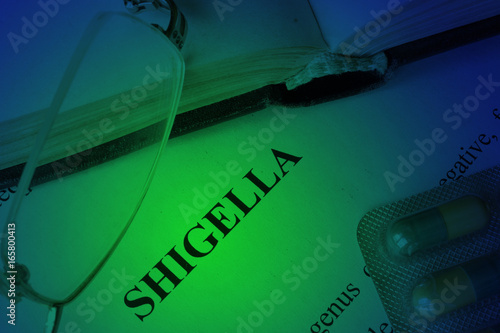 Document with diagnosis shigella on a table.