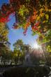 Montreal, Dorchester Square, in autumn