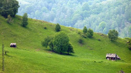 Landschaft in den Karpaten in Rumänien