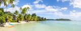 Wakacje na plaży palmowej w tropikach