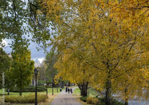 Road in the city park in autumn. Golden autumn...