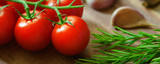 Tomato, rosemary, garlic - a set of products for tomato sauce. banner