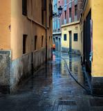 Wet streets of Valencia.