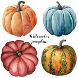 Watercolor pumpkins. Hand painted red, blue, orange and orange with green stripes pumpkins isolated on white background. Botanical illustration for design. Halloween print. - 165860659
