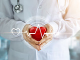 Doctor with stethoscope and red heart shape with icon heartbeat in hands on hospital background - 165873671