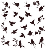 Vector set of bird and twig silhouette