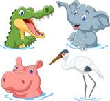 Cartoon safari animal on water