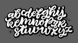 Vector hand drawn alphabet. Brush painted letters. Handwritten script alphabet. Hand lettering and custom typography for your designs: logo, for posters, invitations, cards, etc. Vector type. - 165948251