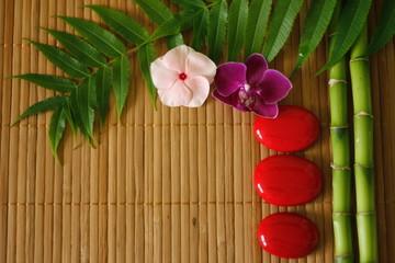 branches de bambou et feuillages avec galets rouges disposés en mode de vie zen et fleurs orchidées sur fond de bois en lammelles