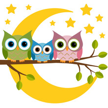 Three Owls On A Branch On A Night Moon Sky  Sticker