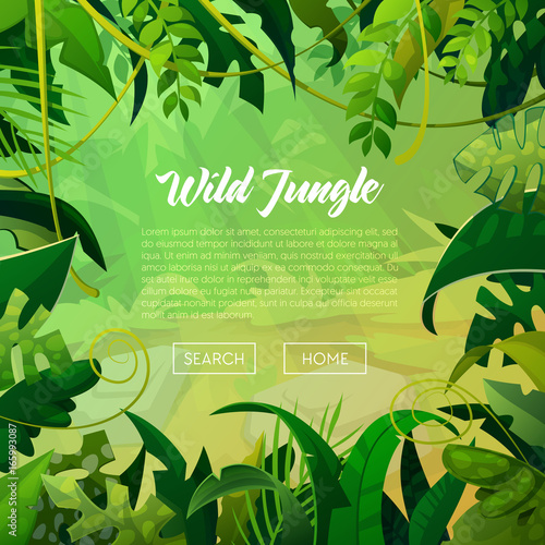 Fototapeta Jungle Banner Tropical Leaves Background. Palm Trees Poster. Vector illustration