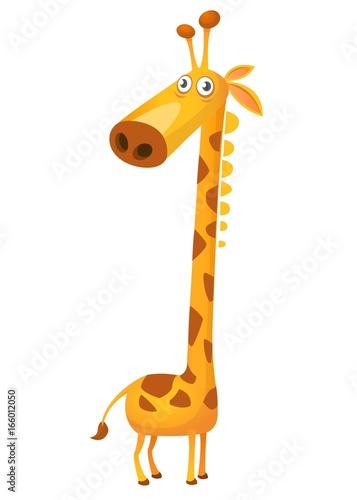 Fototapeta Cartoon funny cute giraffe. Vector illustration isolated on white background