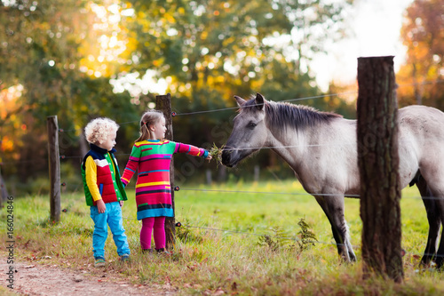 Kids feeding horse on a farm Poster