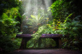 semi tropical landscape with woods and ferns - 166045268