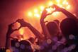 Leinwanddruck Bild - Crowd at concert
