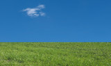 grass and blue sky with clouds background with copy space