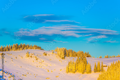 Spoed canvasdoek 2cm dik Oranje winter landscape