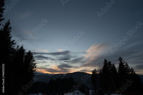 Staande foto Nachtblauw winter landscape