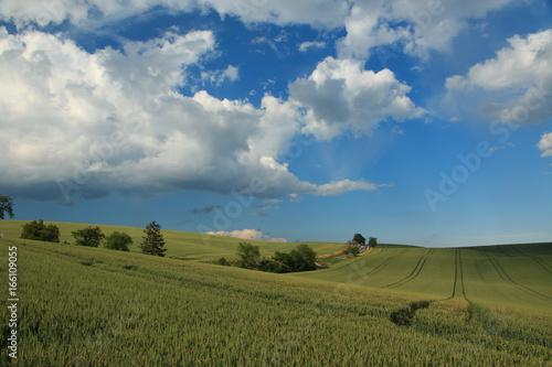Moravian Tuscany landscape