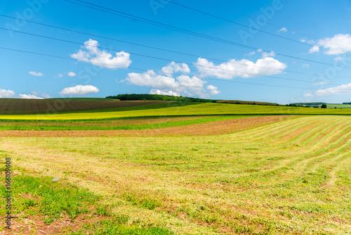 Spoed canvasdoek 2cm dik Oranje Springtime landscape
