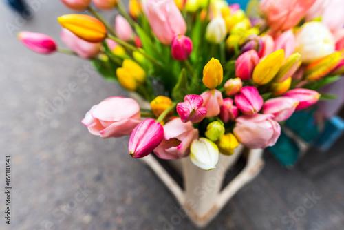 Fototapeta Beautiful flowers