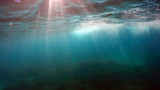natural underwater background