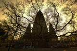 Sunrise at Mahabodhi temple, Bodhgaya, Bihar, India