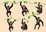 Cartoon funny monkeys vector set - 166204679