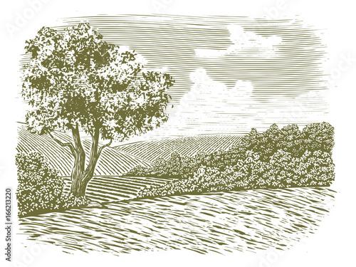 Woodcut Countryside Scene