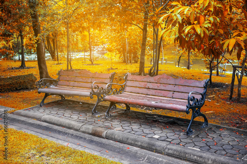 Two benches in the park in autumn