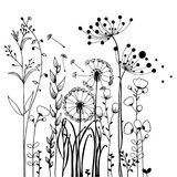 Flowers and Grass on White Collection. Rustic colorful meadow growth illustration set.