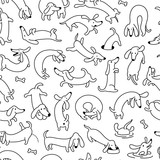 Dachshund Dog Seamless Vector Pattern And Background - 166223280