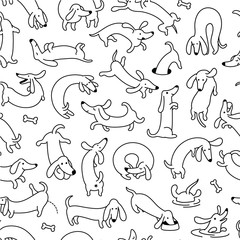 Dachshund Dog Seamless Vector Pattern And Background © Denis
