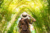 Tourist is visiting tunnel of bamboo forest during summer.