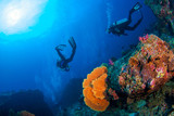 Wonderful underwater world with scuba divers on coral reef and a big colourful sea fan in South Andaman, Thailand, Scuba diving Underwater seascape concept.
