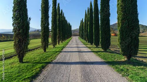 Tuinposter Toscane Tuscany landscape