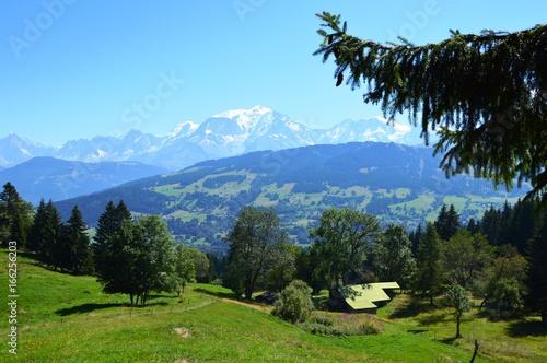 Foto op Plexiglas Pool Mont Blanc Sapin
