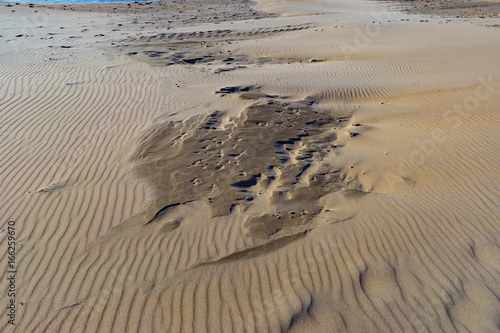Foto op Aluminium Noordzee Wet and dry sand formations on North Sea coast in Belgium