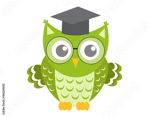 Owl in glasses with square academic cap icon, flat, cartoon style. Isolated on white background. Vector illustration