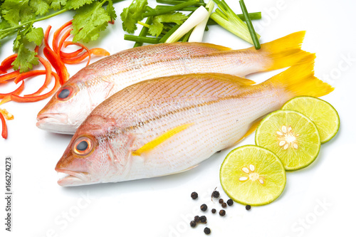 Delicious portion of fresh fish fillet with aromatic herbs for Aromatic herb for fish