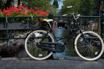 Bicycle and flowers, Amsterdam, Netherlands