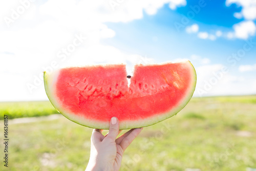Slice of watermelon in hand against the blue sky and field Poster