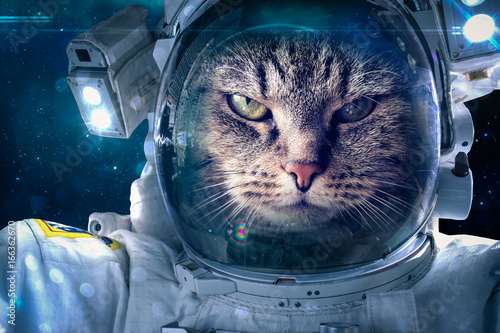 Aluminium UFO Cat in space